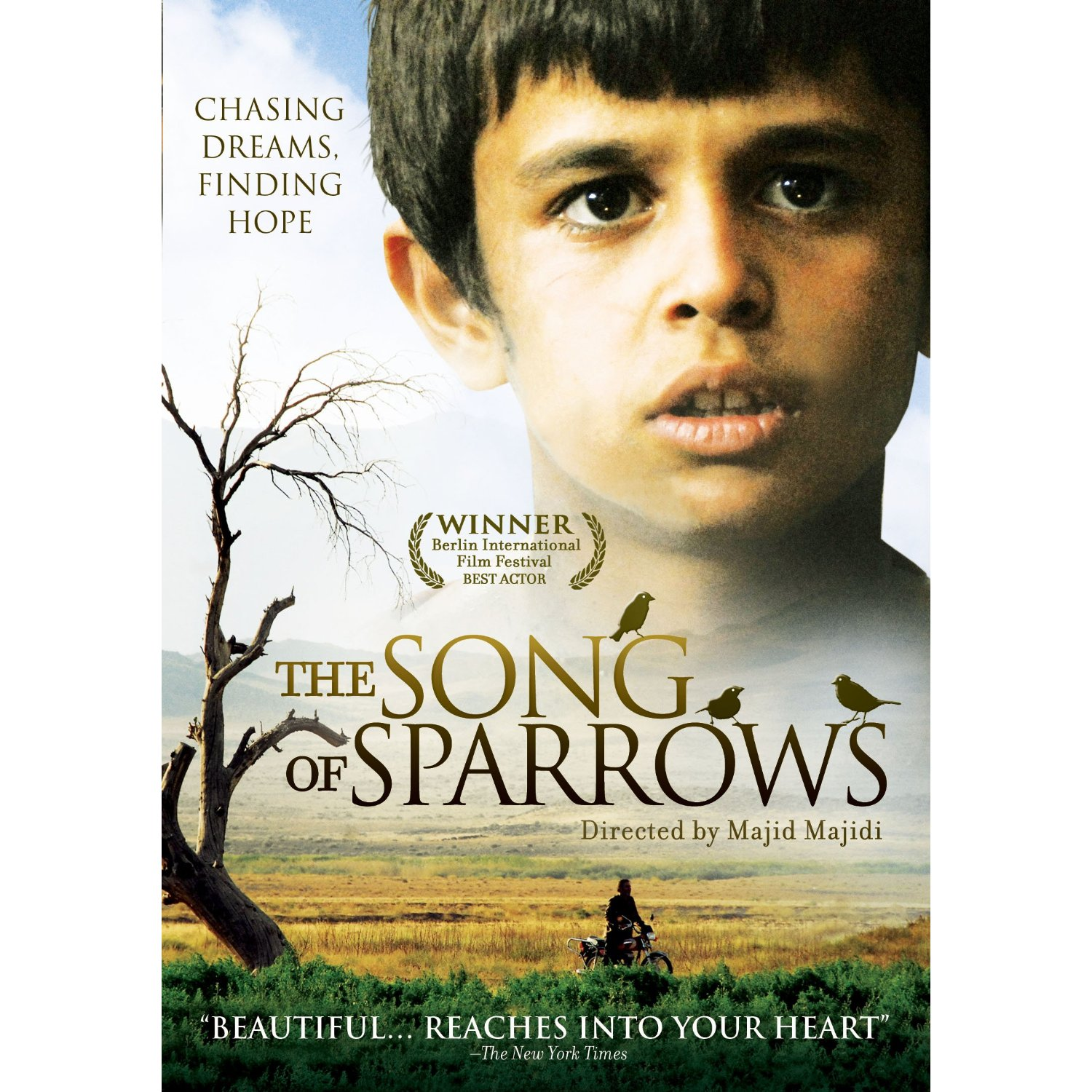 the song of sparrows review
