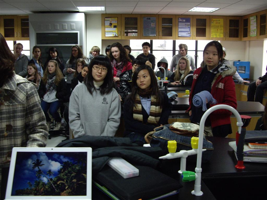 shanghai community international school reviews